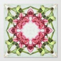 garden bulbs (pattern/pillow) Canvas Print