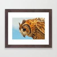 OWL EYED Framed Art Print