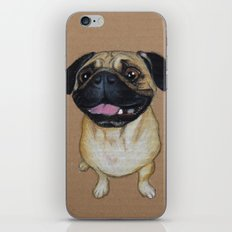 Pug Dog iPhone & iPod Skin