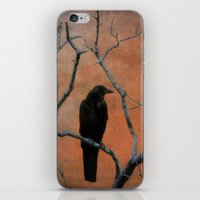 Nature Blackbird iPhone & iPod Skin