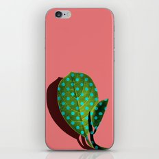 Tropical Leaf #03 iPhone & iPod Skin
