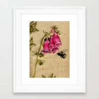 Framed Art Print featuring Bumble Bee by Heather Bechler