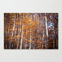 Golden Brown Leaves Canvas Print