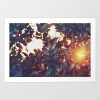 A sunny afternoon Art Print