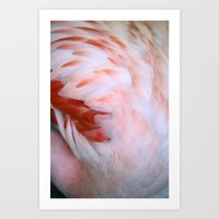 Flamingo #5 Art Print