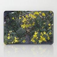 Longwood Gardens - Sprin… iPad Case