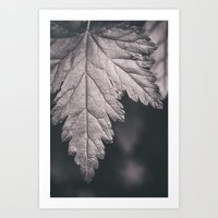 Black And White Forest L… Art Print