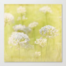 Such A Fine Day Canvas Print
