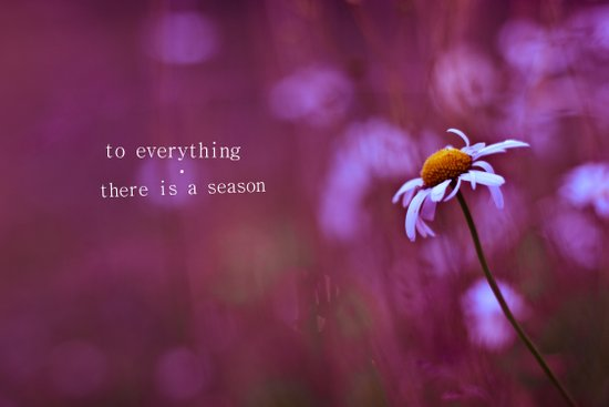 to everything a season Art Print