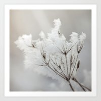 Winter Macro Art Print