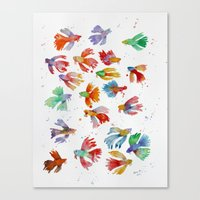 Colorful Fishes Canvas Print