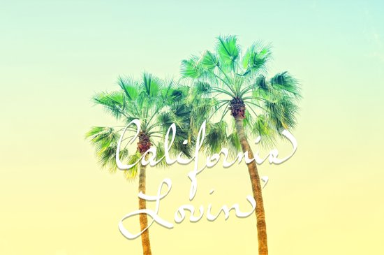 California Lovin' Art Print