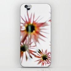 Happie 2 (Daisies) iPhone & iPod Skin