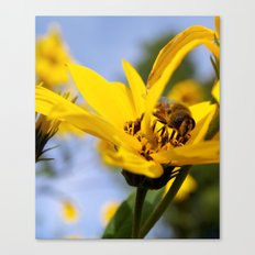 Yellow Flower and Bee Canvas Print