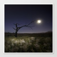 Witches Tree, Grab The M… Canvas Print