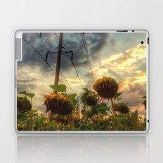 field of faded sunflowers  Laptop & iPad Skin