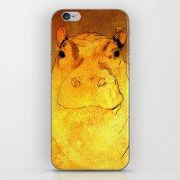 Golden Hippo iPhone & iPod Skin