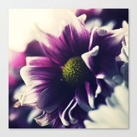 Mother's Day Purple Flow… Canvas Print