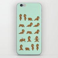 Yoga Bear iPhone & iPod Skin