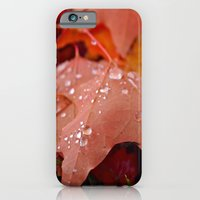 iPhone & iPod Case featuring Autumn dew by Vorona Photography