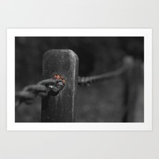 shelter from the storm... Art Print