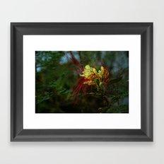 spidery red Framed Art Print