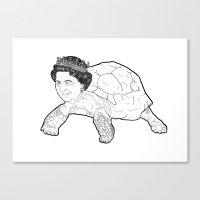 Queen Tortoise Canvas Print
