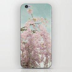 Weeping Cherry iPhone & iPod Skin