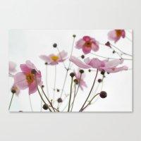 Pink Wild Flowers Canvas Print