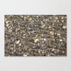 Shell Hunting Canvas Print