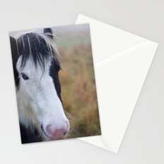 Black and White Horse Portrait Stationery Cards