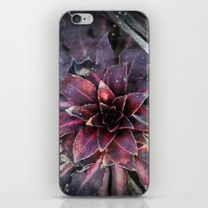 The Plant Of Mystery iPhone & iPod Skin