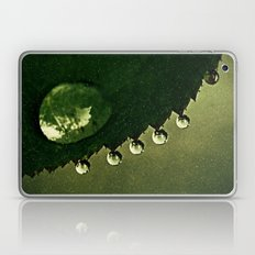 Leaf Drops Laptop & iPad Skin