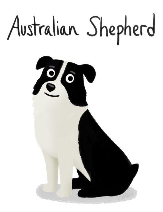 Australian Shepherd - Cute Dog Series Art Print