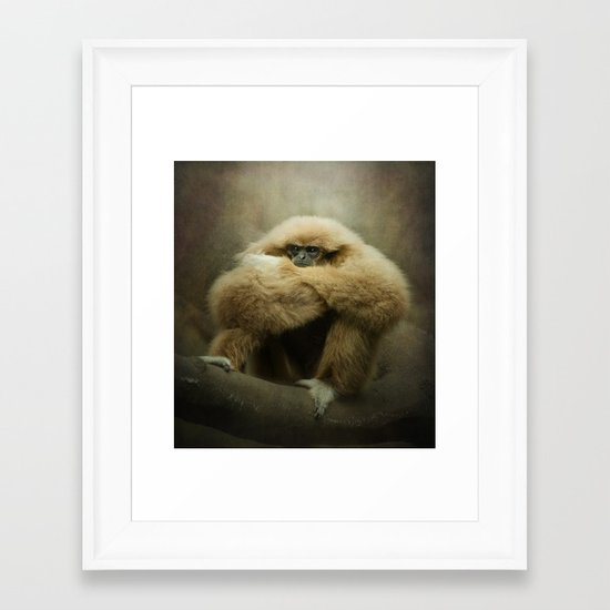 Study of a Gibbon - The Thinker Framed Art Print
