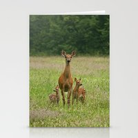 Doe with Twin Fawns Stationery Cards