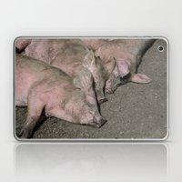 Three little piggies  Laptop & iPad Skin