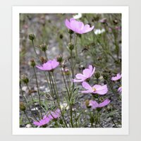 Wild Flowers #2 Art Print