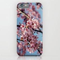 Little Buzzy iPhone 6s Slim Case