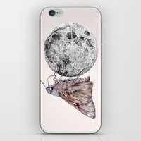 In Which A Moth Is Entic… iPhone & iPod Skin