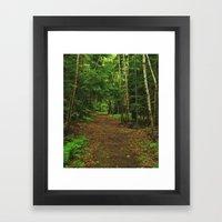 Pathfinder I Framed Art Print