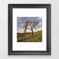 Ladder In Cherry Tree Framed Art Print