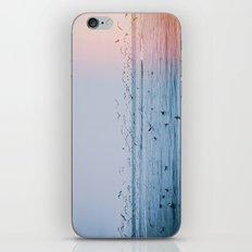 Ocean Birds iPhone & iPod Skin