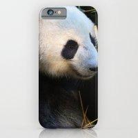 Panda Nap iPhone 6 Slim Case