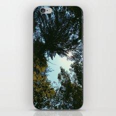 Hiking  iPhone & iPod Skin