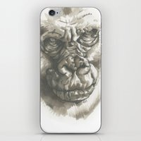 Gorilla Sketch iPhone & iPod Skin