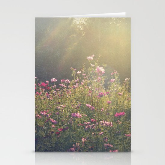 Cosmos in the Late Day Sun Stationery Card