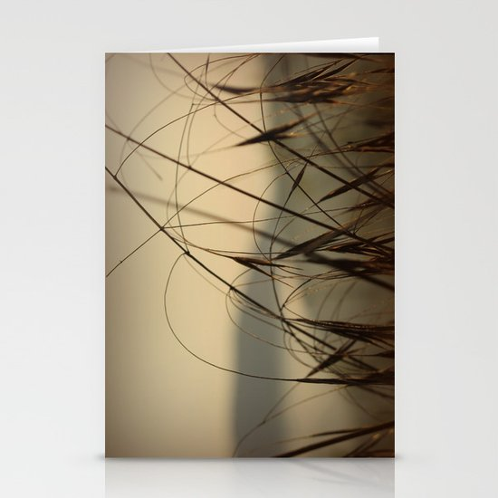 Grasses  Stationery Card