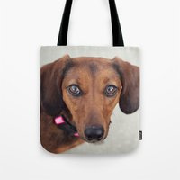 Doxie Dares You  Tote Bag