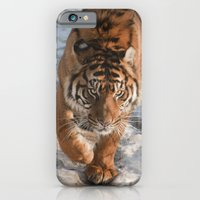 iPhone & iPod Case featuring Tiger by Mary Kilbreath